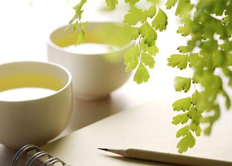 春天养生饮花茶